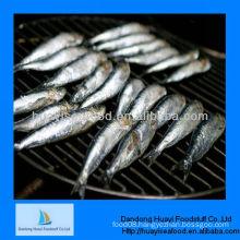 seafood supplier fresh sardine seafood