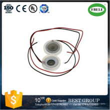 Ultrasonic Transducer Microporous Atomization Piezoelectric Ceramic with Wire, Piezo Buzzer, Mini Buzzer, Magnetic Buzzer, Passive Buzzer (FBELE)