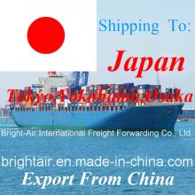 Логистика поставщика морские контейнерные перевозки экспедитор из Китая в Японию