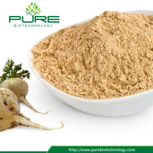 100% Naturligt Maca Root Extract Powder