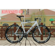 Hot Sale High Quality Colorful Fixed Gear Bikes/Bicycle