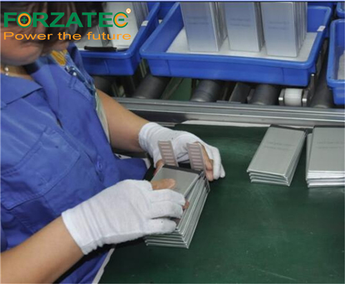 lithium battery assembly