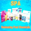 Waste Water Treatment Disinfectant Chemicals Balancer Sanitizer Flocculant Algaecide