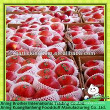100-125pcs huaniu apple
