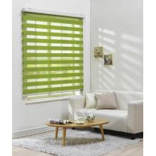 Green horizontal zebra blinds