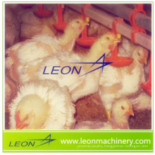 Hot price of automatic poultry nipple drinking system for livestock