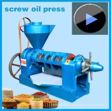 Les ventes chaudes! Expulseur d'huile d'arachide de 4.5ton / jour, modèle de machine d'arachide Yzyx10-J