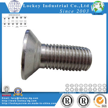 Ss304 Hex Socket Flat Head Cap Screw DIN7991
