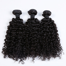Large Stock Wholesale Price Brazilian Curly Human Hair Weave
