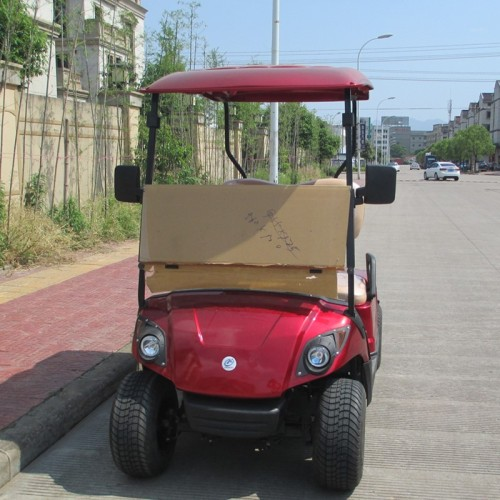 2 seats Cheap electric golf cart for golf courses