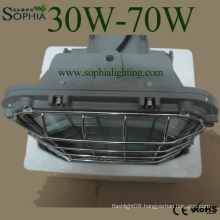 New LED Explosion- Proof Light, Explosion-Proof Light, Industrial Lighting
