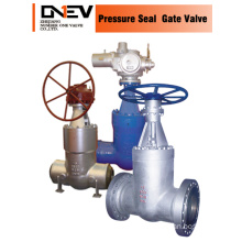 SGS Assigned Gear Operated Gate Valve (Z40Y)
