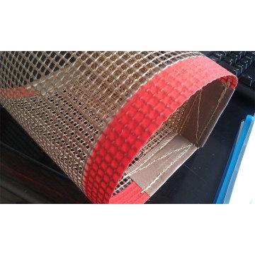 PTFE Mesh Belts