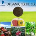 Engrais organique pour légumes, Frtuit, arbre, cultures et autres plantes