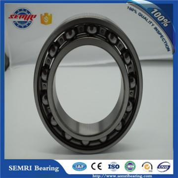 China OEM Service Carbon Bearing From Shandong Factory (6305)