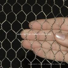 Galvanização galvanizada elétrica Hexagonal Wire Mesh