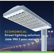 5 anos de luz de rua do diodo emissor de luz da garantia 250W IP65 (QH-LD6C-250W)