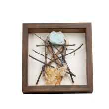 High quality wood frame display Plant specimen Can be hung Shadow Box Frame Wood Display Case