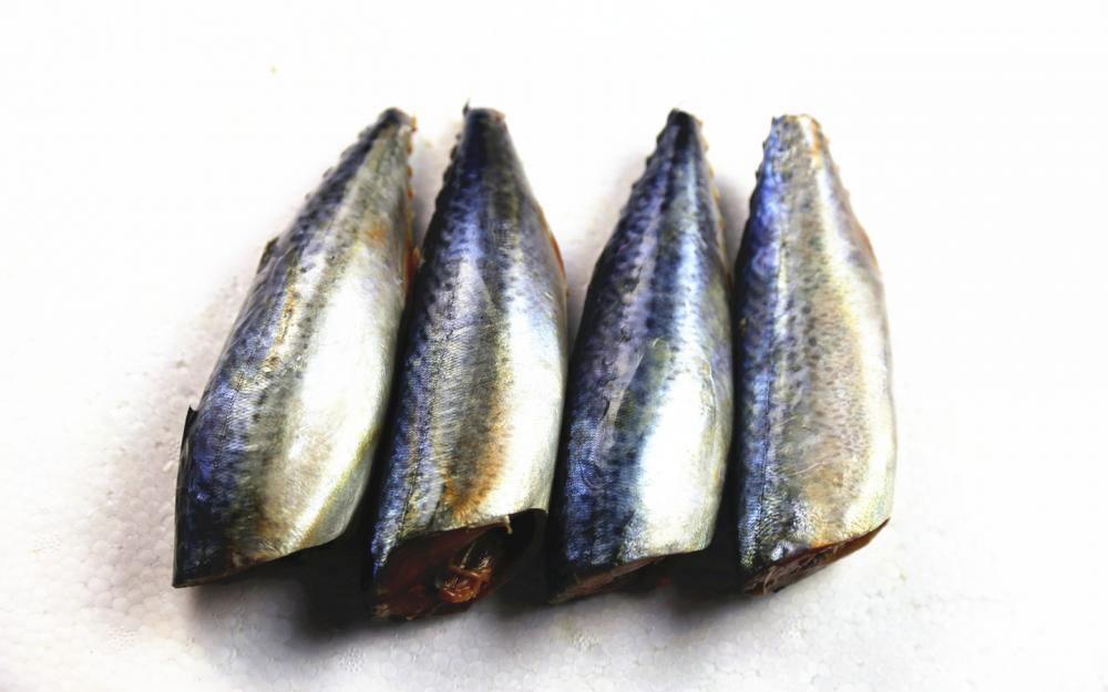Best Sea Frozen Mackerel HGGT