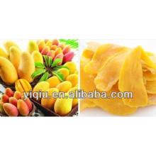 Dried mango drying machine
