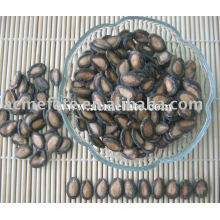 Chinese fresh black watermelon seeds kernels
