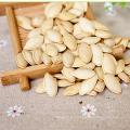 Semillas de calabaza comestibles procesadas chinas