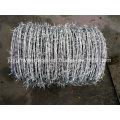 Electro y Hot Dipped Hot Dipped Barbe Wire (fabricante especializado)