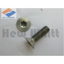 high end Titanium torx head screws