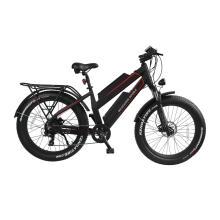 aluminum alloy frame electric bicycle 48V 500W/750W/1000W electric fat bike