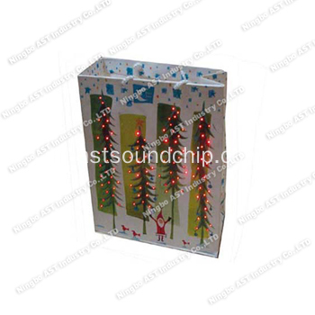 Recordable Gift Bag, LED Light Bag, Music Gift Bag, Promotionele tas