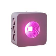 COB Grow Light LED élève des lumières pour les plantes d'intérieur