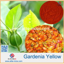 Gardenia Yellow Powder Cor Valor 300/400/500