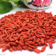 Pacote de presentes secos Sem enxofre Goji Berry