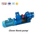 Electric roots vacuum pump