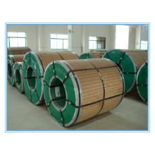 Bobine d'acier inoxydable SUS304 En1.4301