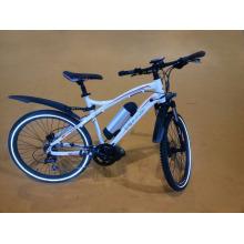 Чемпион питания CE Электрический велосипед с Литиевой батареей (BN2604)