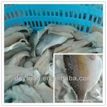 Fabrique fujian de filet de filet de mer congelée