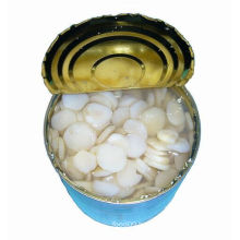 Best Quality Canned Water Chestnuts