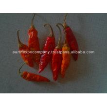 small chili