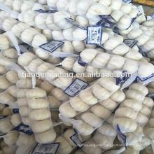 4cm 5cm small packing garlic