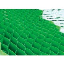 HDPE Geocell com Certificado CE, Fabricante Diretamente.