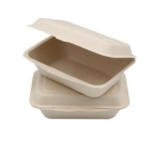 Food Grade Biodegradable Water Proof Sugarcane Bagasse Food Takeaway Container
