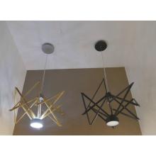 Modern Solid Wood Pendant Lamp (1168S)