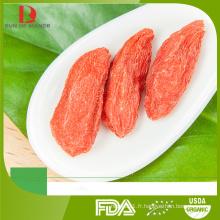 Fabricant en gros de goji en vrac / baies de goji rouge organique chinoises / wolfberry rouge / nerf rouge