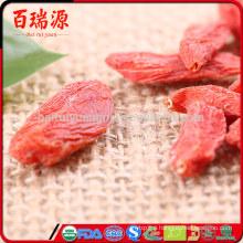 Red ningxia goji ecellent goji berry dried wolfberry