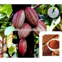 Agrandissement du pénis produits sexuels poudre de cacao cru