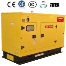 Cummins Diesel Generator (BU30KS)