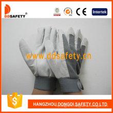 Pig Grain Leather Gloves DLP418
