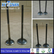 Motorcycle Engine Intake & Exhaust Valve for Honda Cg125 (14711-KY0-980, 14721-KY0-980)