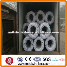 annealed wire with elasticity